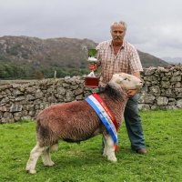 2016 World Champion Herdwick