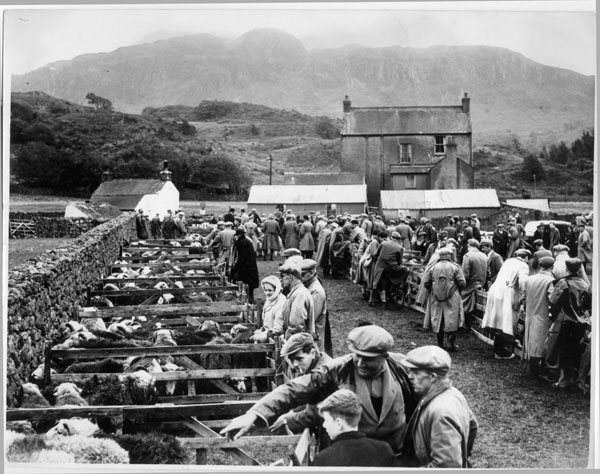 Eskdale Show at Boot c. 1956. Photo courtesy of Joseph Hardman Collection